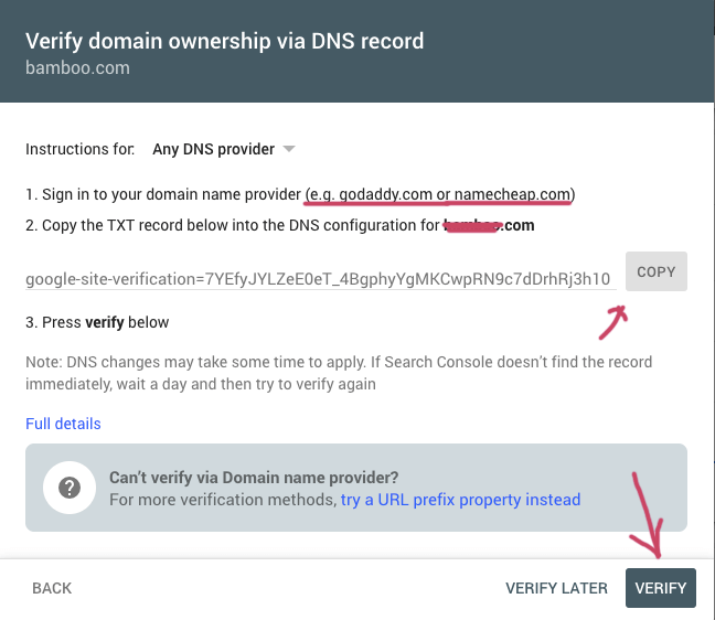 verify property DNS